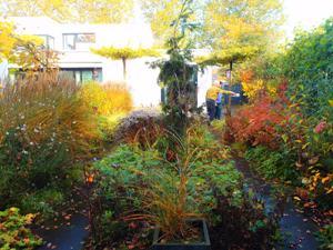 Tuin nazomer Udenhout